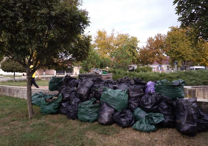 Название: Собранный мусор в ПМР.jpg Просмотров: 485  Размер: 159.0 Кб