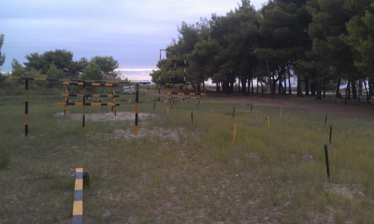 Название: Тренировочный комплекс в Посиди.jpg Просмотров: 151  Размер: 89.9 Кб