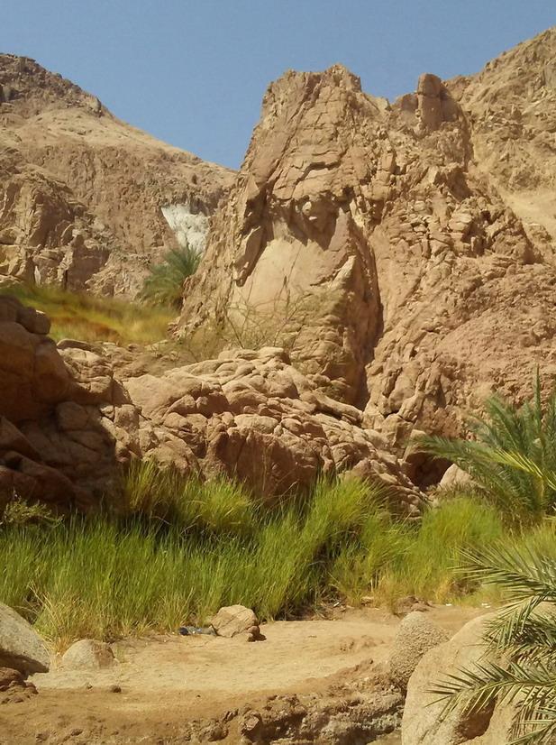 Название: Египет пустыня.jpg Просмотров: 105  Размер: 215.9 Кб