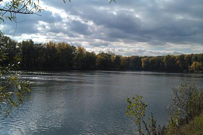 Нажмите на изображение для увеличения Название: Река Днестр.jpg Просмотров: 627 Размер:95.8 Кб ID:925