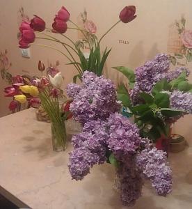 Нажмите на изображение для увеличения Название: Сирень и тюльпаны.jpg Просмотров: 547 Размер:84.7 Кб ID:822