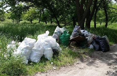 Нажмите на изображение для увеличения Название: Собранный мусор на субботнике.jpg Просмотров: 450 Размер:90.5 Кб ID:2122